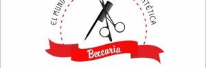el mundo para el peluquero beccaria distribuidoras en  san martin 386, rio cuarto , cordoba