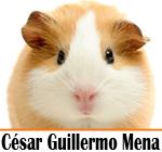 publicidad Consultorio Veterinario Dr. Cesar Mena